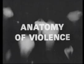Anatomy of violence